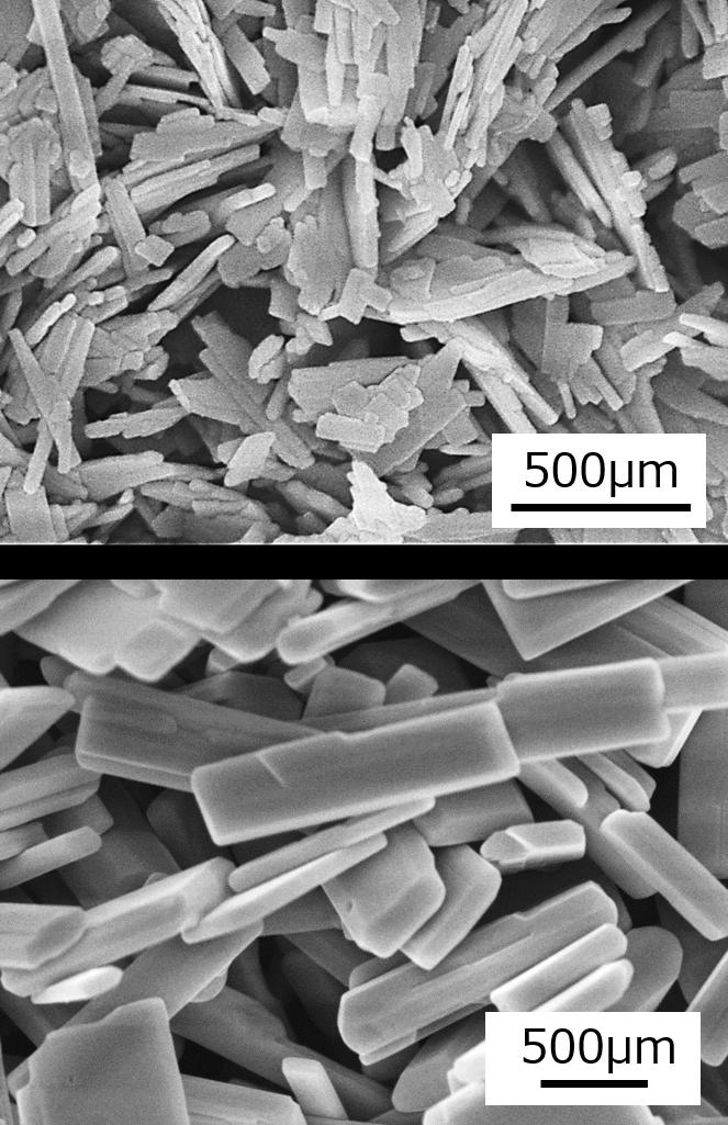 KTiNbO5結晶のSEM像.左)フラックスAで育成したKTiNbO5結晶.右)フラックスBで育成したKTiNbO5結晶